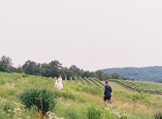 The bride and groom during their first look at Pippin Hill Farm & Vineyards in Charlottesville, Va Virginia Wineries, Charlottesville Va, Blue Ridge Mountains, Summer Weddings, Wine Country, Lush, Florals, Vineyard, Backdrops