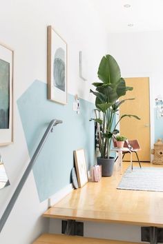 4 Tips for Finding the Perfect Plants (and Planters) for your Home