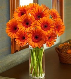 Get this beautiful bouquet of orange Gerberas at 1800flowers.ca for 20% off with promo code HALLOWEEN20 and get 6 SB per dollar (6% cash back!) at Swagbucks!