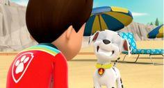 Los Paw Patrol, Rick I Morty, Paw Patrol Characters, Nickelodeon, Ea, Random Stuff, Barbie, Wallpapers, Cartoon