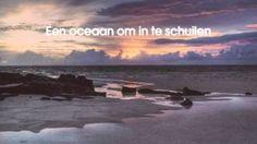 oceaan racoon - YouTube