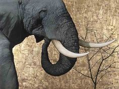 """""""The Mighty Tusker"""", Oil and Gold Leaf on Canvas, 90cm by 120cm, (2011) by Marc Alexander"""