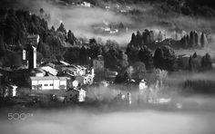 fog - Winter landscape with mist in B & W