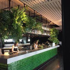 693 vind-ik-leuks, 5 reacties - Flowers Vasette (@flowersvasette) op Instagram: 'Everything is green and clean for @swisseau partnership launch event with @scuderiaferrari…'