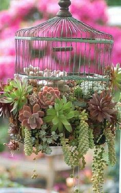 a bird cage with flowers
