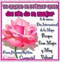 Te regalo la primer rosa del día de la mujer 8 de marzo. Día Internacional de la Mujer Porque eres mujer y muy valiosa! Comparte!