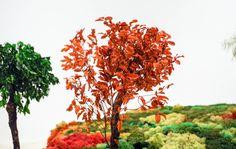 """""""El jardín japonés es un microcosmos de la naturaleza, y sus antecedentes se remontan al siglo VI procedentes de China, cuya cultura penetra en el país como el Budismo y la escitura kanji."""" Menene Gras Balaguer, comisaria. Fuente: Dossier #ExposicionesUGR #UnJardinJapones. #EstherPizarro. Foto: Lidia Fernández"""
