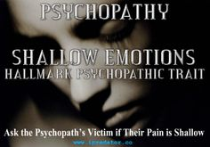 Online Psychopathy [aka, iPredopathy] is a criminology construct supplementing classic psychopathy. It is a severe personality disorder defining those who use cyberspace to stalk, abuse, victimize, control & manipulate others. Driven by grandiosity and/or sexual perversion, they feel no remorse or guilt. Most do not break the law and live unscathed by law enforcement, fraternal organizations, religious institutions and the legal system. https://www.ipredator.co/ipredator/online-psychopaths/