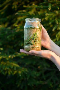Dzień dobry, Witam Was pięknie: stęskniliśmy się troszkę za sobą, prawda? (Ale pamiętajcie, że na Facebooku blogowym życie kwitnie!:-)). Wraz ze środkiem maja, nadszedł idealny czas na przyg… Natural Medicine, Kitchen Recipes, Mason Jars, Medical, Canning, Health, Outdoor Decor, Nature, Food