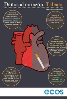 No fumar Heart Anatomy, Healthy Tips, Beauty Care, Health And Beauty, Spanish, Infographics, Facebook, Fitness, Medicine