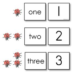 Deluxe Miniature Ladybugs Counting Set for Early Math