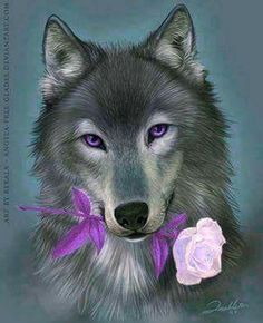 Beautiful - Lavender might be my true favorite colour, esp in this pic. #Wolf #Lavender <3