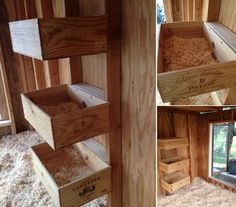 Chicken-Nesting-Boxes-4