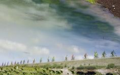 Riding friends set off beautiful shadow in the water Cycling around the Qinghai Lake of China Friends Set, Cycling, China, Mountains, Water, Travel, Beautiful, Gripe Water, Biking