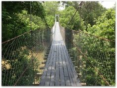 Travel | Oklahoma | Attractions | Things To Do | Free Things | Adventure | Beautiful Places | Outdoors | Nature | Family Activities | Kids | Swinging Bridges