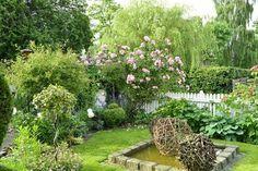 damm, trädgårdskonst
