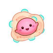 33 Mejores Imágenes De Bacteria Cartoon Microorganisms Cell