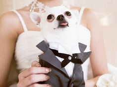 If your dog is a big part of your life, why not include him/her in your big day? (Just make sure you assign someone to take care of him/her during the ceremony!)