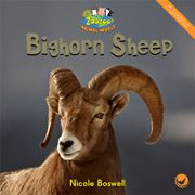 Bighorn Sheep—by Nicole Boswell Series: Zoozoo Animal World GR Level: D Genre: Informational