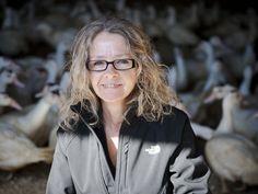 Au Coq du Village est élevé le canard de barbarie! Terrine, cuisse, mousse de foie, gésier confit, pâté, rilette et plus encore! http://www.canardduvillage.com