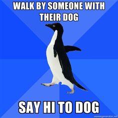 <3 socially awkward penguin Especially funny cause I do this!