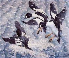 Image result for charles tunnicliffe