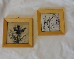 CEMENT ART WORKS / Vintage Framed Nature Works / Made by BYGONERA