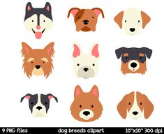 Dog Breeds clipart  Dog Face Clipart  Husky Clipart  by SorbetBox