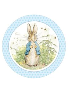 Edible Icing sheet, BLUE Peter rabbit, inch Round Cake Topper by TlcEdibles on Etsy Peter Rabbit Cake, Peter Rabbit Birthday, Peter Rabbit Party, Coelho Peter, Beatrix Potter Cake, Beatrix Potter Illustrations, Peter Rabbit And Friends, Cake Drawing, Blue Peter