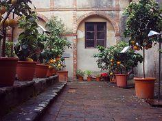La Campagna dentro le mura - Apertura al pubblico dei giardini privati di Buggiano Castello (Pistoia)