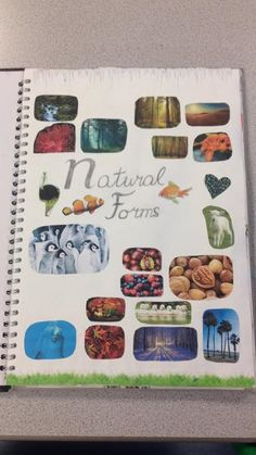 Title Page - Natural Forms (Year 10)