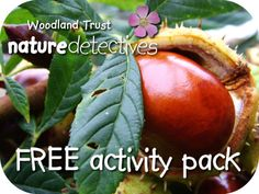 lots & lots of outside activities according to season (themed packs sent by email, too, in the UK)