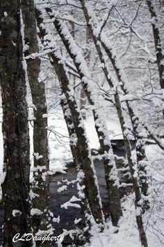 Yep!  Is snowing again!  2015