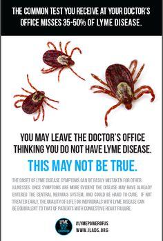 Be Aware of Lyme Disease ~ Part III