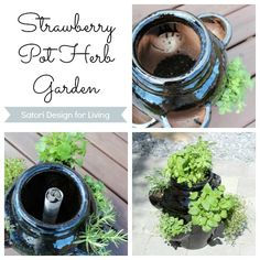 Strawberry Pot Herb Garden