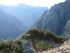 Going down the Samaria gorge...in the heart of the White Mountains