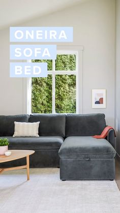 The Oneira sofa bed sleeps as well as it sits: real good. Velvet upholstery lends style and c Sofa Bed Video, Room Decor Bedroom, Living Room Decor, Sofa Bed Living Room, Bed Room, Sofa Bed For Small Spaces, Le Closet, Sofa Bed Design, Sofa Furniture
