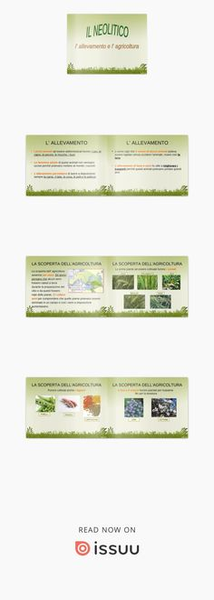 Il Neolitico: allevamento ed agricoltura  Il periodo Neolitico: la scoperta dell'allevamento e dell'agricoltura; nuovi utensili agricoli 3, Make It Simple, Magazines, Public, Platform, Names, Author, Digital, Books
