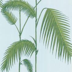 http://www.etoffe.com/17001-thickbox/papier-peint-palm-leaves.jpg