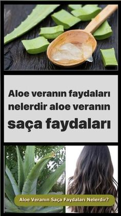 Aleo Vera, Healthy Skin Care, Stay Young, Aloe, Green Beans, Hair Beauty, Herbs, Diet, Bag
