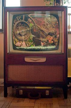 Upcycled Television/Fish Tank Goldfish Tank, Tanked Aquariums, Vintage Tv, Tv Cabinets, Cool Fish Tanks, Awesome Tanks, Steampunk Furniture, Tank Design, Vintage Fishing