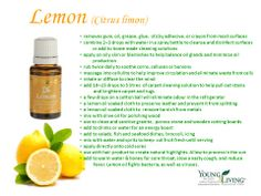 Lemon has a strong, clean, purifying citrus scent that is revitalizing and uplifting. It consists of 68 percent d-limonene, a powerful antioxidant. It is delightfully refreshing in water and may be beneficial for the skin. Lemon essential oil is cold-pressed from the rinds of lemons.