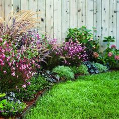 Easy-care spring borders...