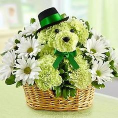 Order Lucky™ flower arrangements from All Flowered Up Too, your local Lubbock, TX florist. Send Lucky™ floral arrangement throughout Lubbock and surrounding areas. Carnation Bouquet, Green Carnation, Carnations, Beautiful Flower Arrangements, Floral Arrangements, Beautiful Flowers, 800 Flowers, Order Flowers, Puppy Flowers