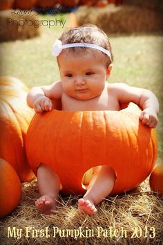 Pumpkin patch photography