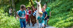 Austria has plenty to do that will excite the entire family ► the world's oldest amusement park ► the world's largest ice cave ►salt mines ► dinosaur parks Travel With Kids, Family Travel, Alpine Coaster, Dinosaur Park, Interactive Exhibition, People Talk, Warm Outfits, Amusement Park, Plan Your Trip