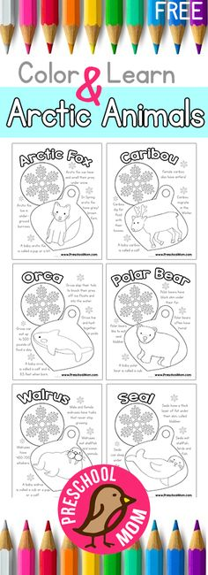 Adorable free printables for preschoolers to learn about Arctic animals!