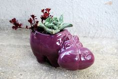 hippo planter in grape purple by claylicious