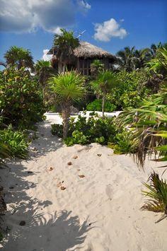 Behla La Chiquita: Beach house, Tulum beach, Tulum Mexico