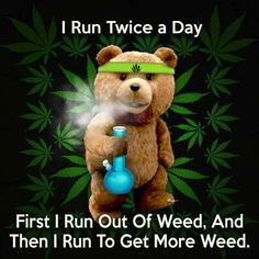 Buy top quality Cannabis Seeds from Seedsman. Our range of marijuana seeds is one of the largest online, with more than 3000 varieties of Cannabis Seeds. Funny Weed Memes, Weed Jokes, 420 Memes, Marijuana Art, Weed Humor, Medical Marijuana, Funny Humour, Rose Tattoos, Stoner Humor